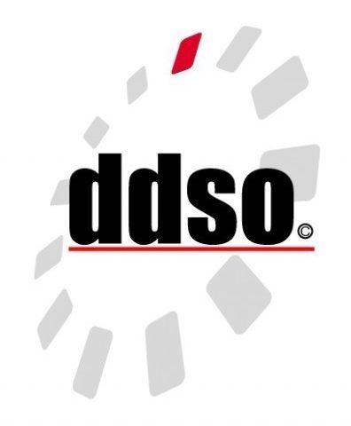 Developmental Disabilities Service Organization